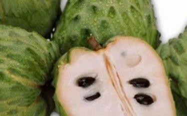 Ky frut magjik shëron kancerin menjëherë, ja çfarë duhet të…