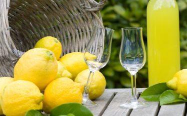 Ky lëng natyral forcon sistemin imunitar