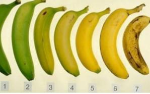 Ja cilën nga këto banane duhet të hani