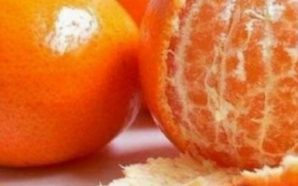 Pas kësaj, nuk do të blini më kurrë mandarina