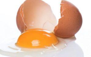 Mos i hidhni kurrë lëvozhgat e vezëve! Arsyeja do ju…