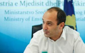 Diaspora duhet të bëhet pjesë e sistemit politik